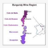 Burgundian Appellation