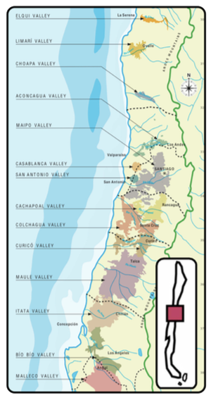 Chile Wine Region