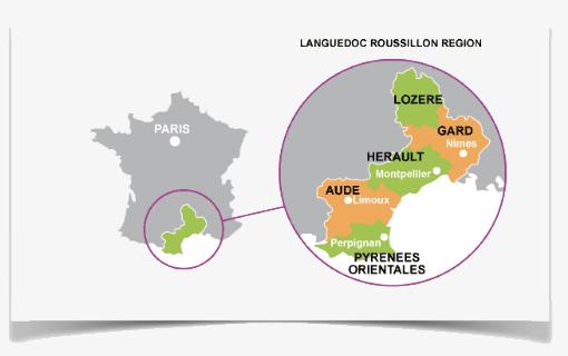 Languedoc France Wine Region