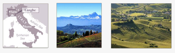 Langhe D.O.C., in Piedmont Wine Region
