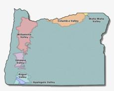 Bergundy France Wine Region