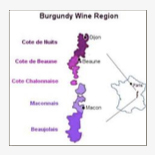 Burgundian Appellation